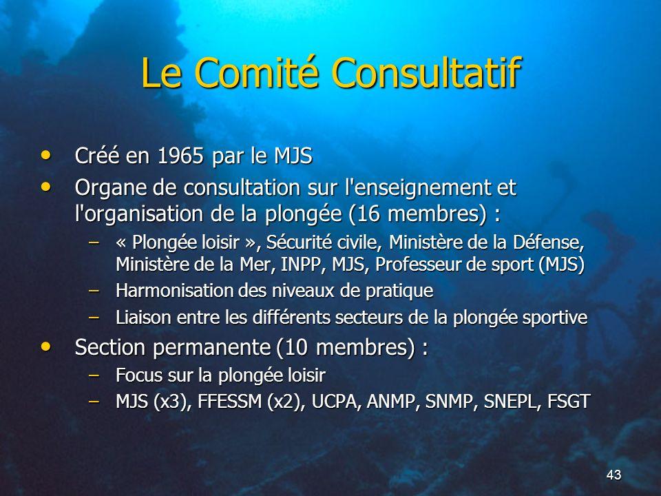Le Comité Consultatif Créé en 1965 par le MJS