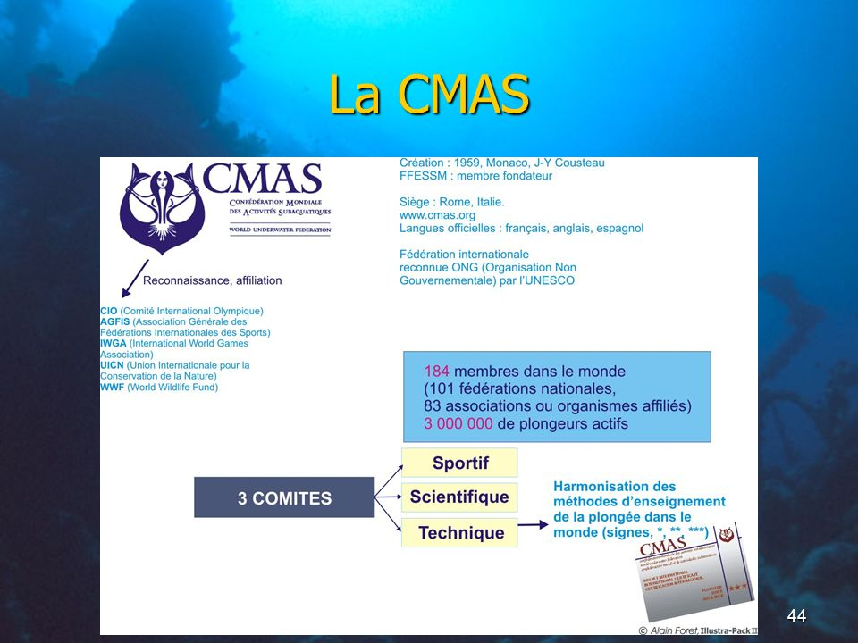 La CMAS