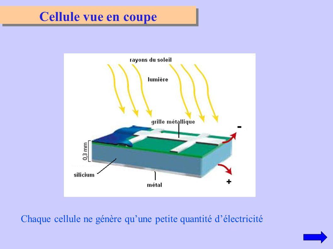 Cellule vue en coupe Chaque cellule ne génère qu'une petite quantité d'électricité