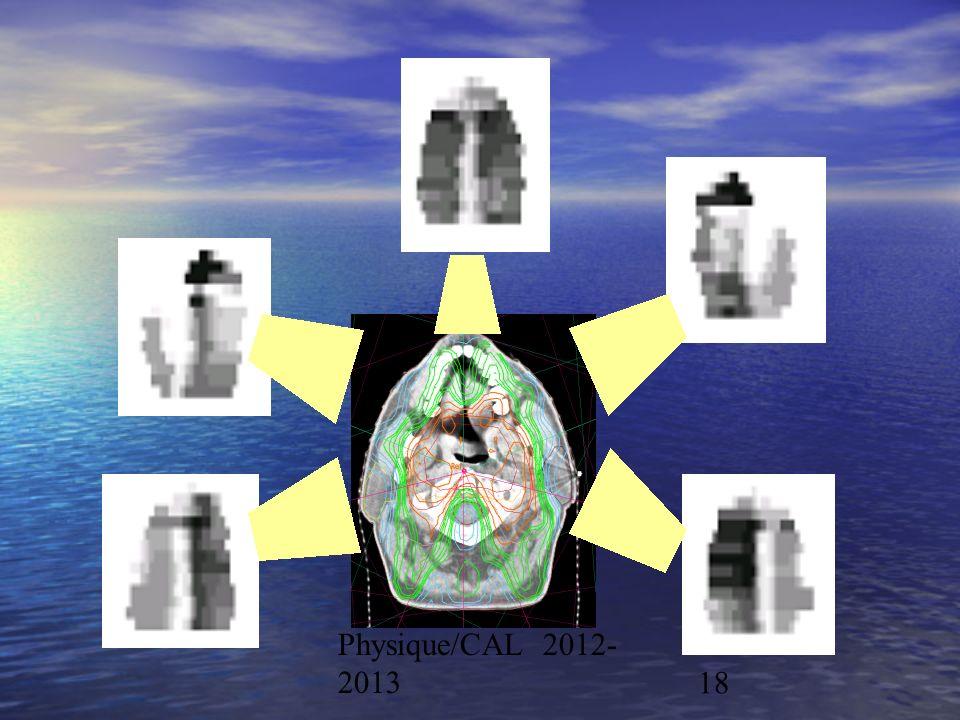 Physique/CAL 2012-2013