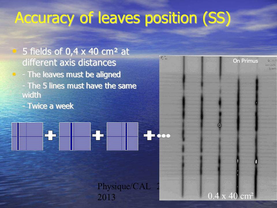 Accuracy of leaves position (SS)