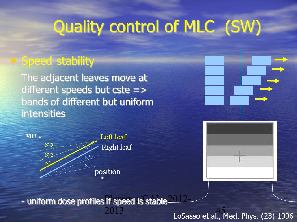 Quality control of MLC (SW)