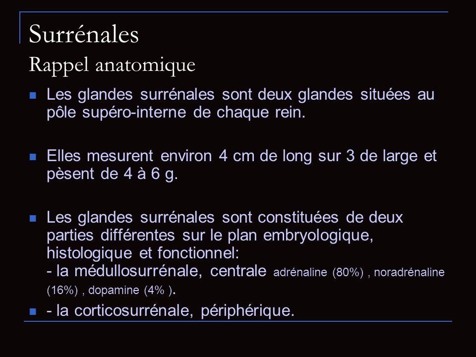 Surrénales Rappel anatomique