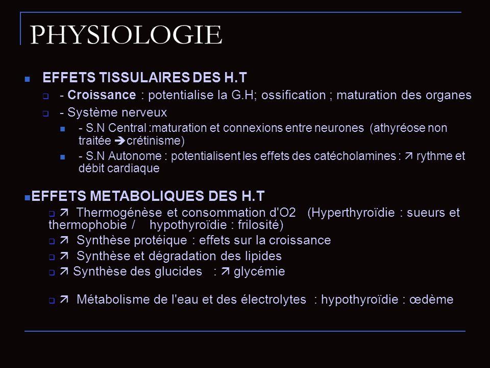 PHYSIOLOGIE EFFETS METABOLIQUES DES H.T EFFETS TISSULAIRES DES H.T