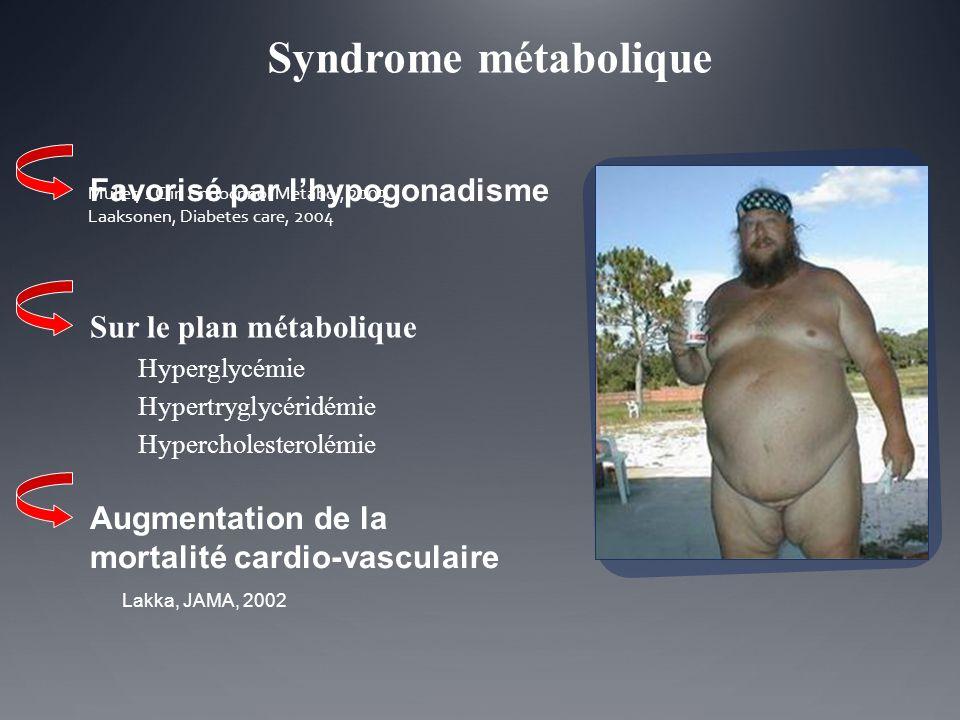 Syndrome métabolique Favorisé par l'hypogonadisme
