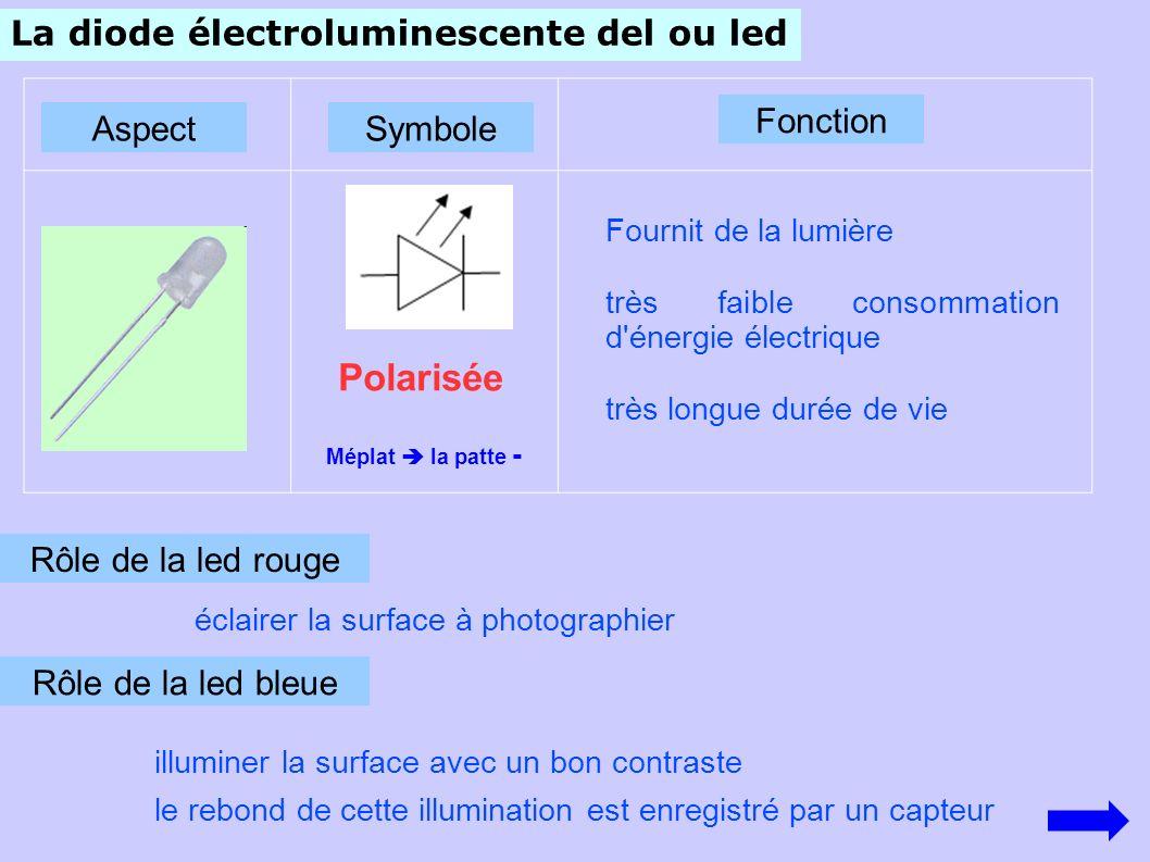 Polarisée La diode électroluminescente del ou led Fonction Aspect