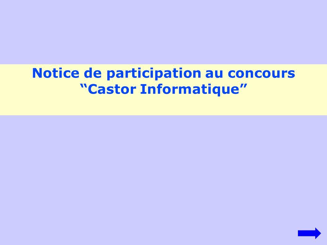 Notice de participation au concours Castor Informatique