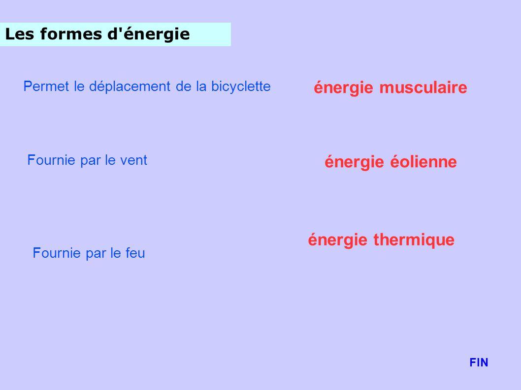 énergie musculaire énergie éolienne énergie thermique