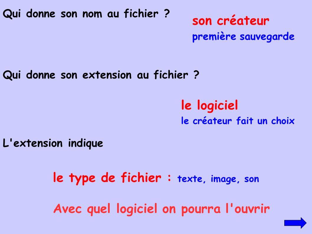 le type de fichier : texte, image, son