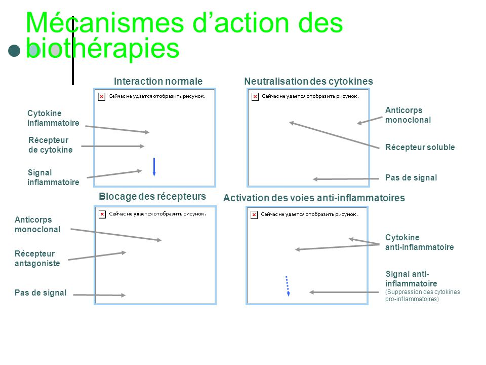 Mécanismes d'action des biothérapies