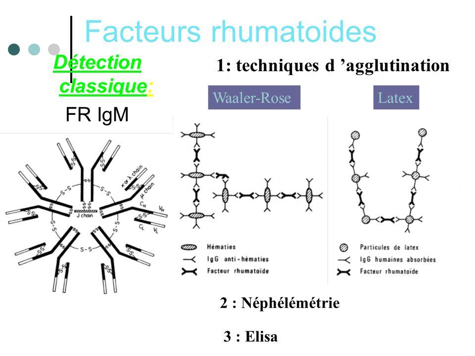 Facteurs rhumatoides Détection classique: FR IgM