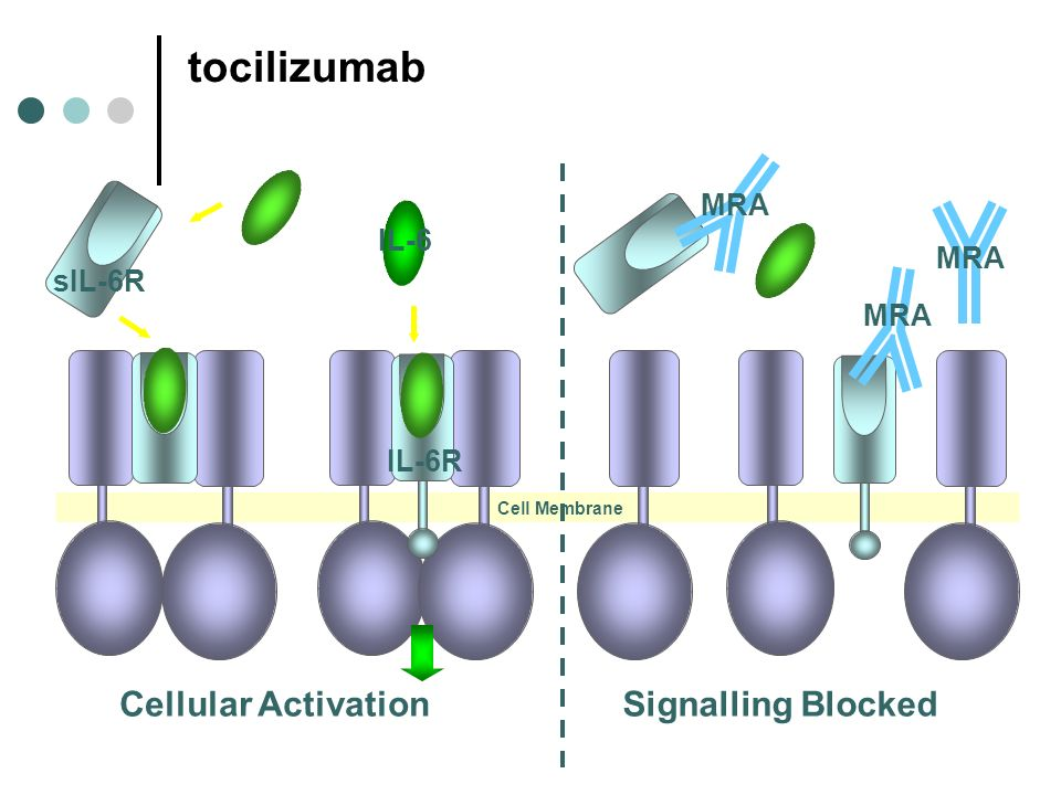 tocilizumab Cellular Activation Signalling Blocked IL-6 MRA sIL-6R