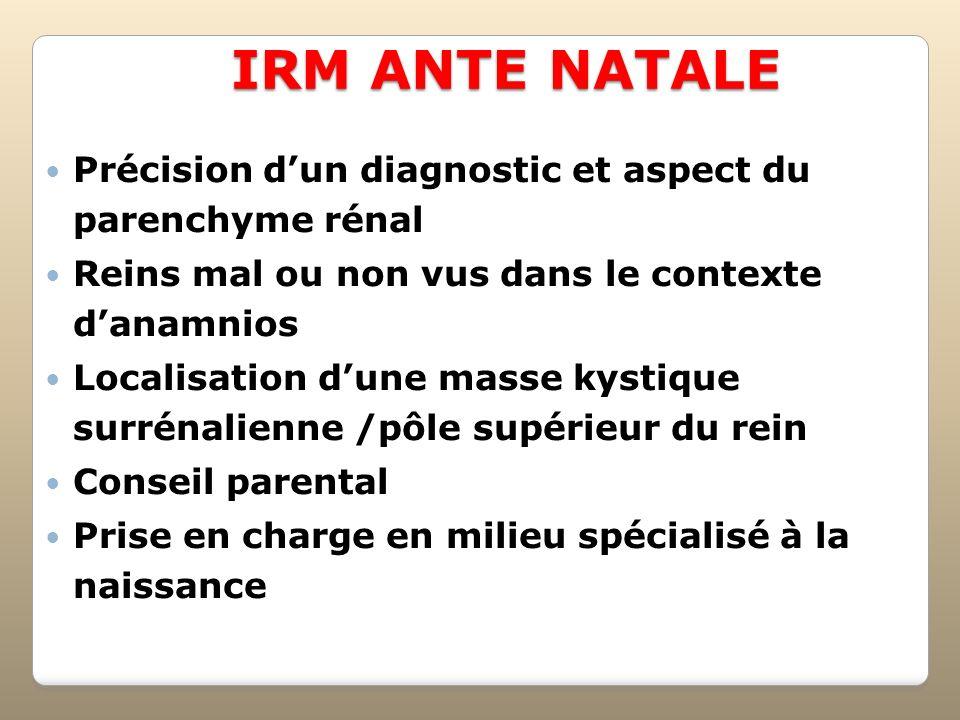 IRM ANTE NATALEPrécision d'un diagnostic et aspect du parenchyme rénal. Reins mal ou non vus dans le contexte d'anamnios.
