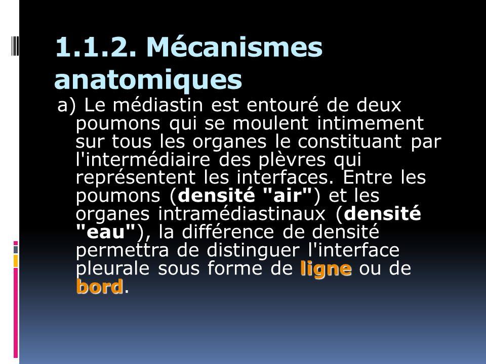 1.1.2. Mécanismes anatomiques