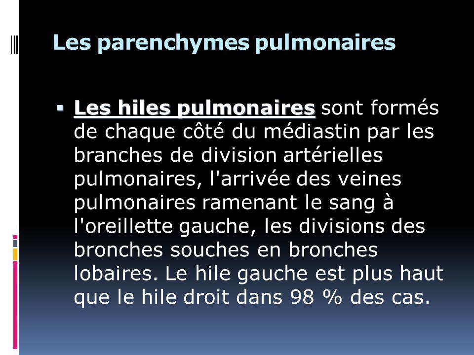 Les parenchymes pulmonaires