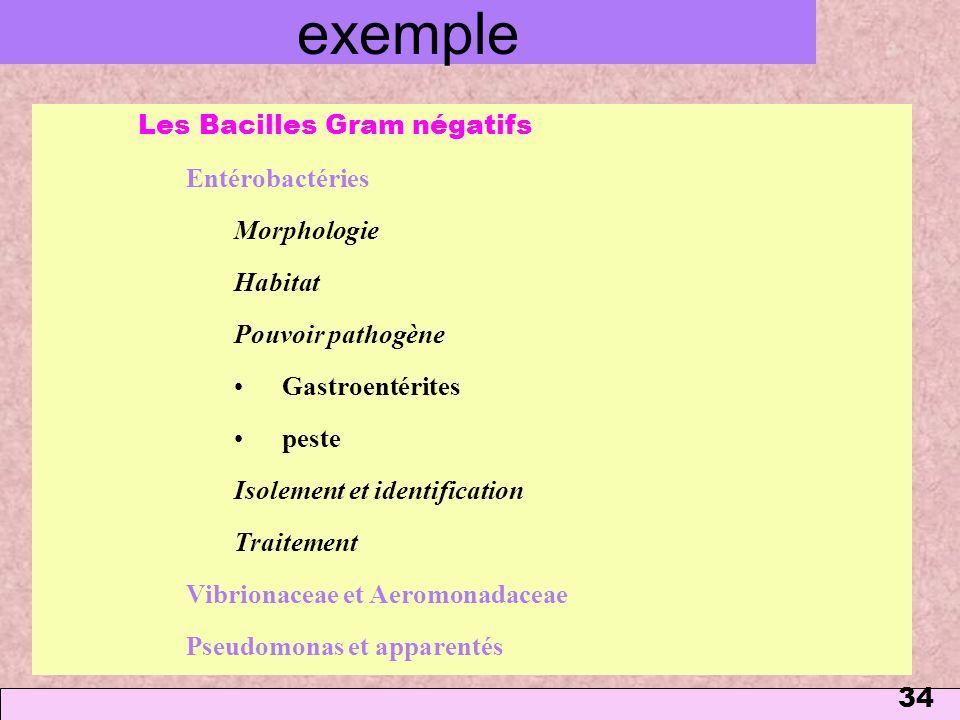 exemple Les Bacilles Gram négatifs Entérobactéries Morphologie Habitat