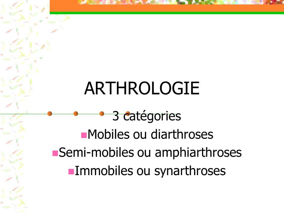 ARTHROLOGIE 3 catégories Mobiles ou diarthroses