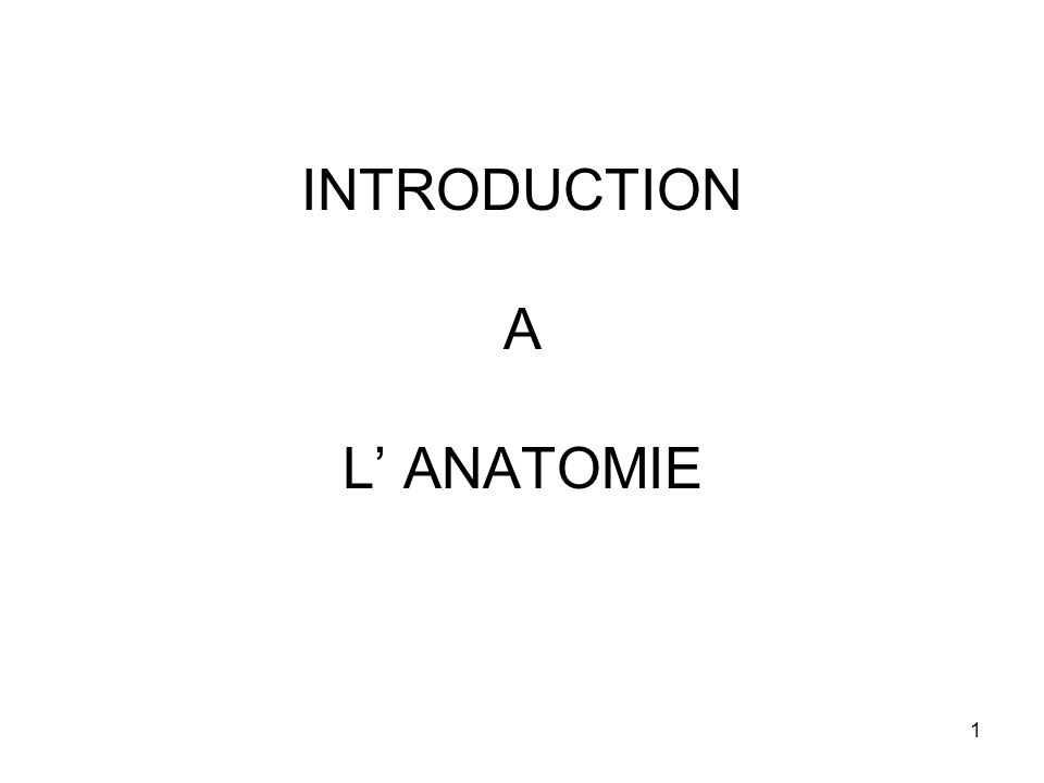INTRODUCTION A L' ANATOMIE