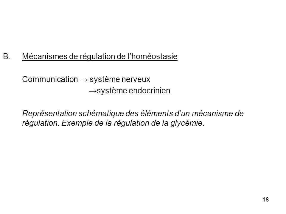 Mécanismes de régulation de l'homéostasie