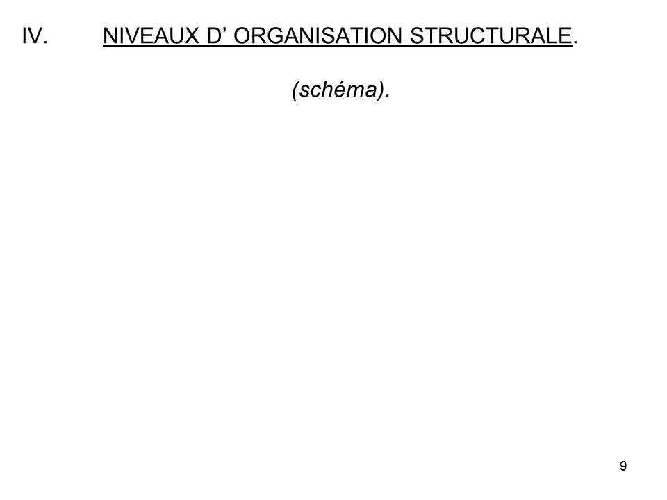 NIVEAUX D' ORGANISATION STRUCTURALE. (schéma).