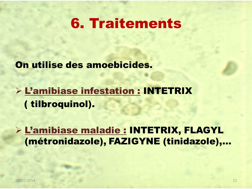 6. Traitements On utilise des amoebicides.