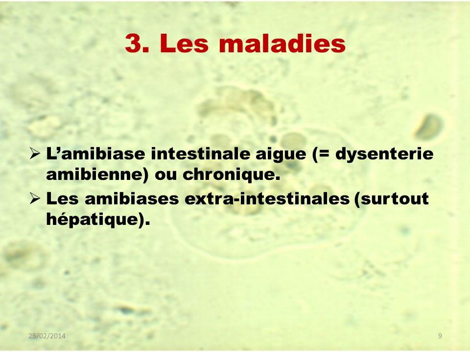 3. Les maladies L'amibiase intestinale aigue (= dysenterie amibienne) ou chronique. Les amibiases extra-intestinales (surtout hépatique).