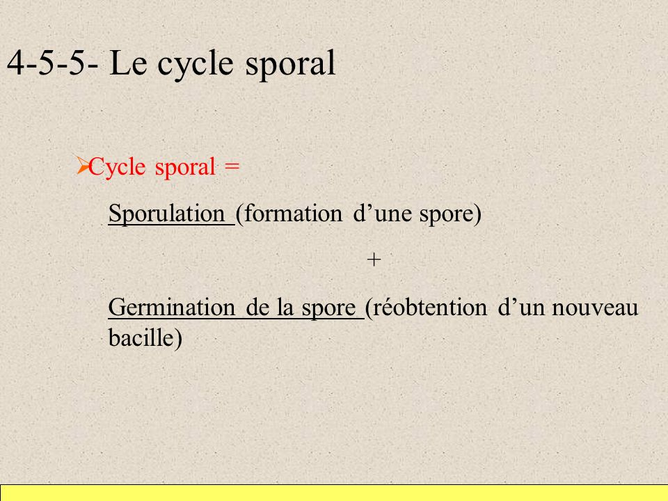 Le cycle sporal Cycle sporal =