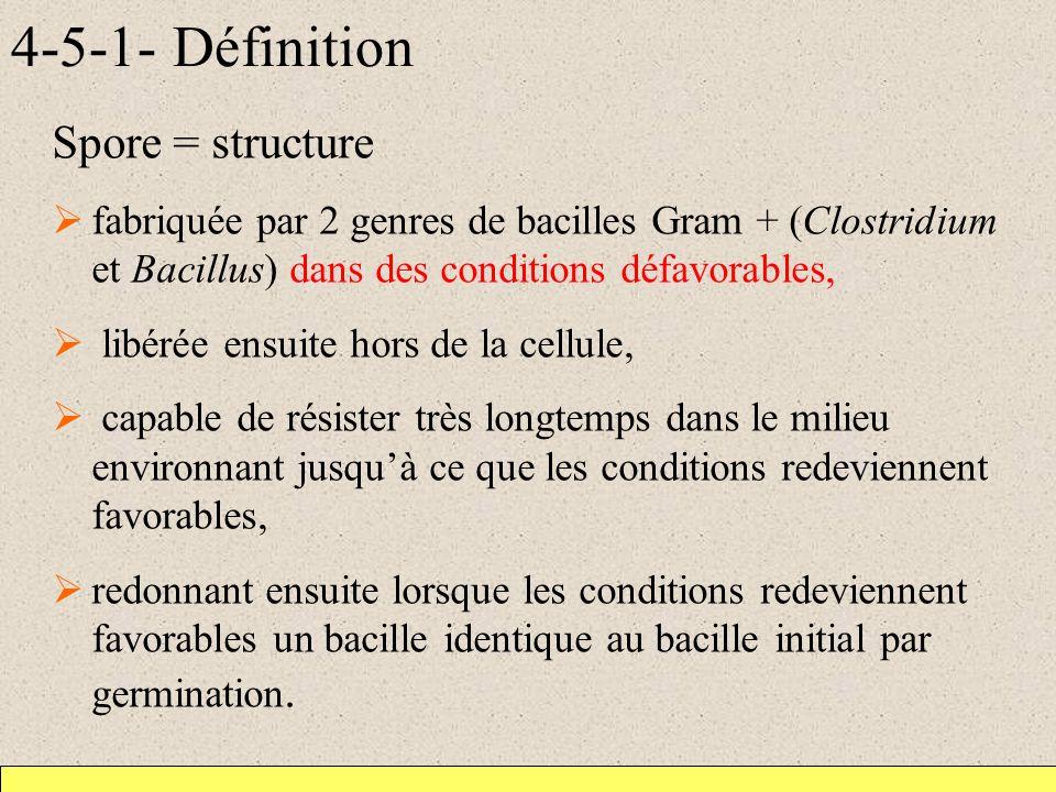 4-5-1- Définition Spore = structure