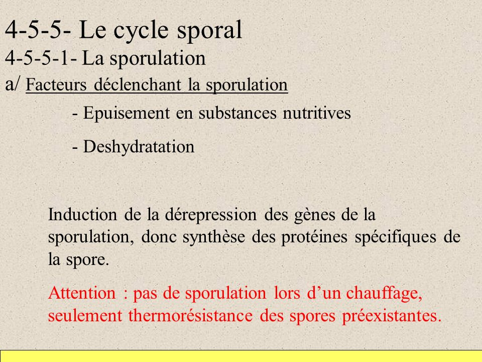 4-5-5- Le cycle sporal 4-5-5-1- La sporulation a/ Facteurs déclenchant la sporulation