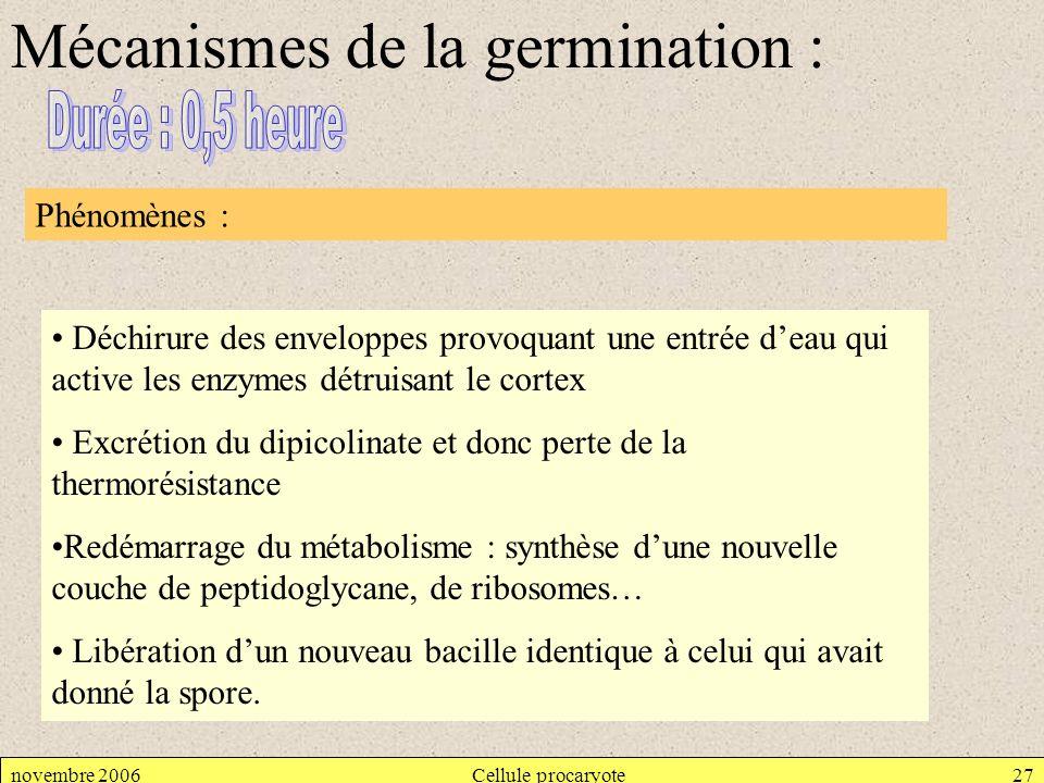 Mécanismes de la germination :