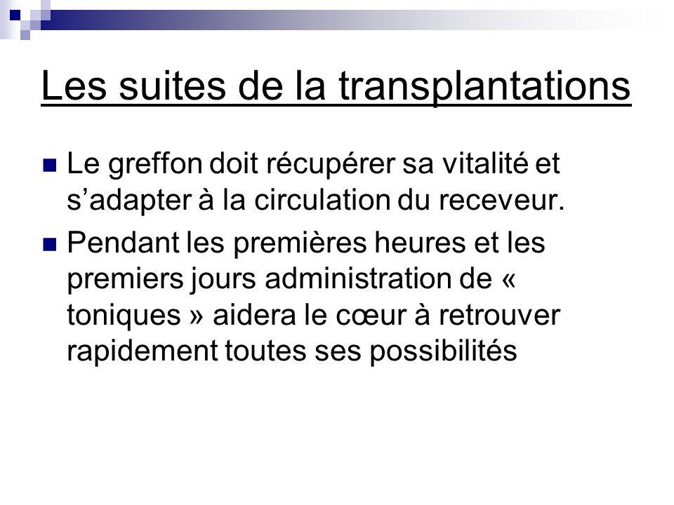 Les suites de la transplantations