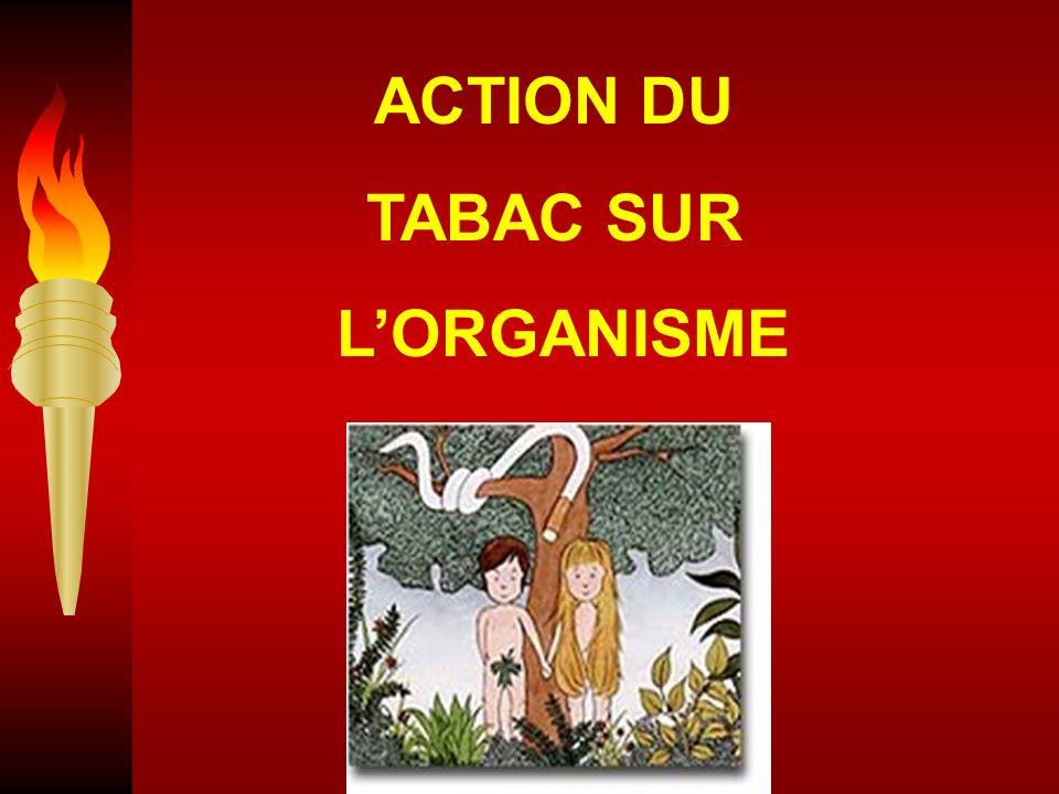 ACTION DU TABAC SUR L'ORGANISME