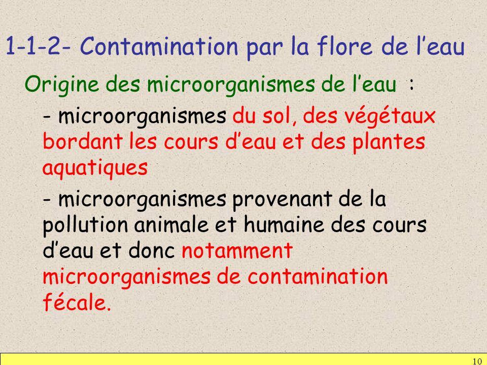 1-1-2- Contamination par la flore de l'eau