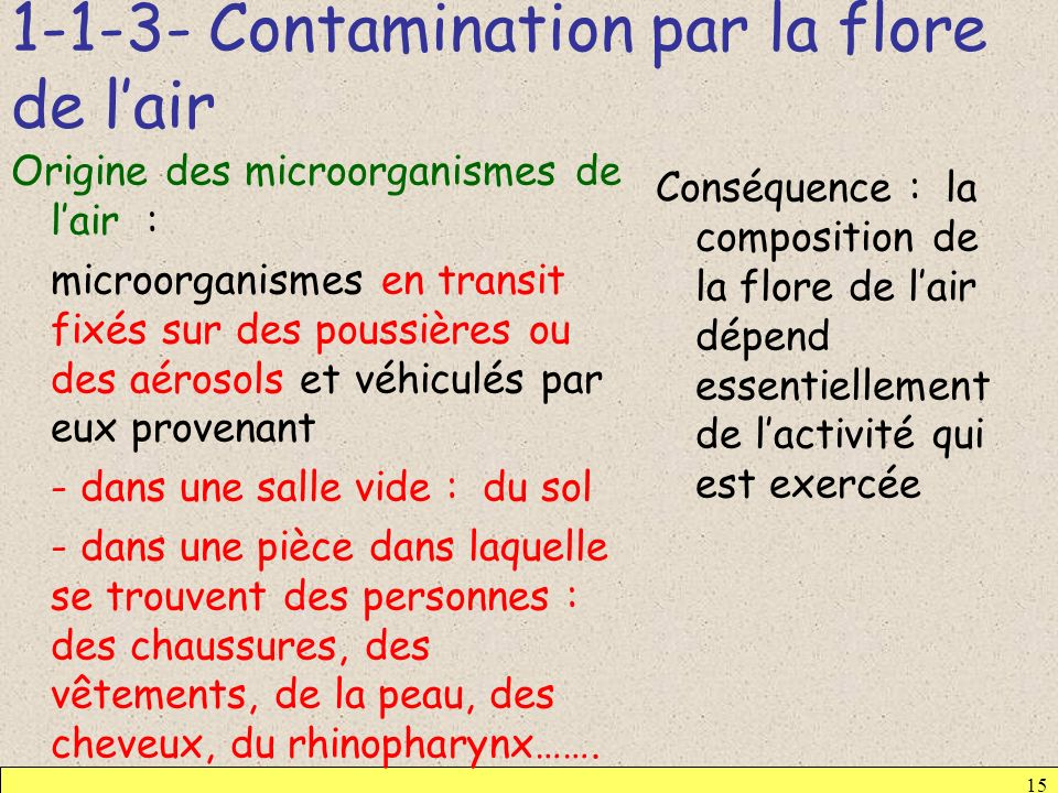 1-1-3- Contamination par la flore de l'air