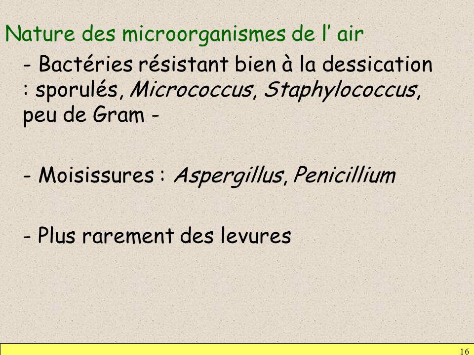 Nature des microorganismes de l' air - Bactéries résistant bien à la dessication : sporulés, Micrococcus, Staphylococcus, peu de Gram - - Moisissures : Aspergillus, Penicillium - Plus rarement des levures