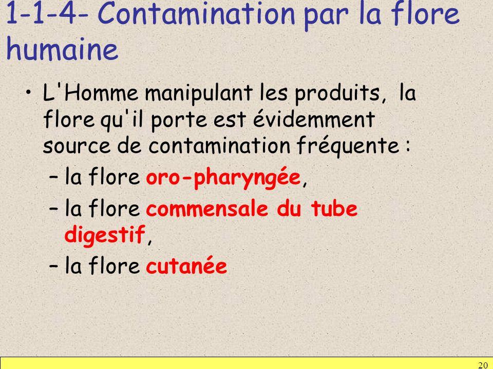 1-1-4- Contamination par la flore humaine