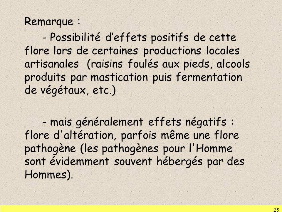 Remarque : - Possibilité d'effets positifs de cette flore lors de certaines productions locales artisanales (raisins foulés aux pieds, alcools produits par mastication puis fermentation de végétaux, etc.) - mais généralement effets négatifs : flore d altération, parfois même une flore pathogène (les pathogènes pour l Homme sont évidemment souvent hébergés par des Hommes).