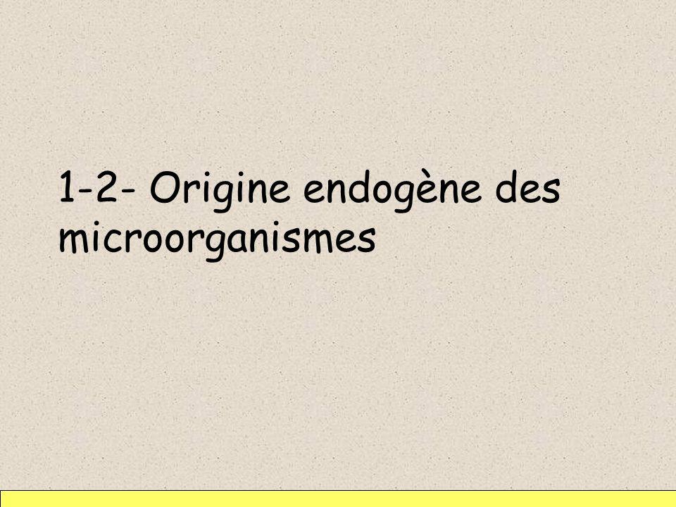 1-2- Origine endogène des microorganismes