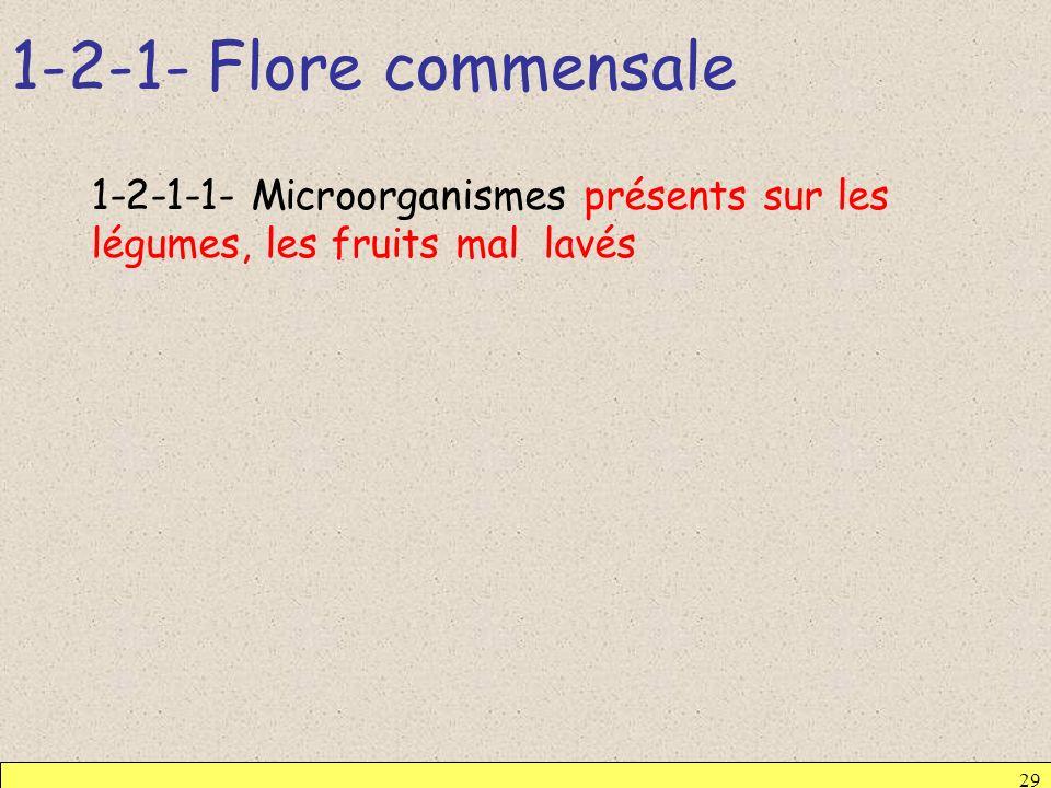 1-2-1- Flore commensale 1-2-1-1- Microorganismes présents sur les légumes, les fruits mal lavés
