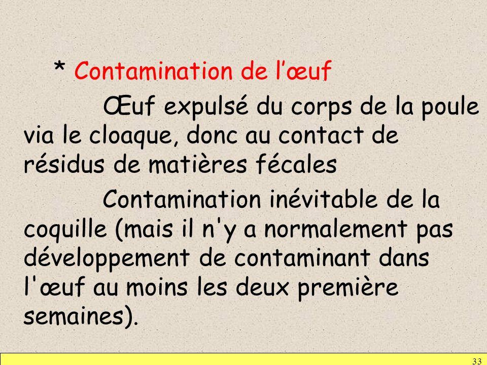 * Contamination de l'œuf