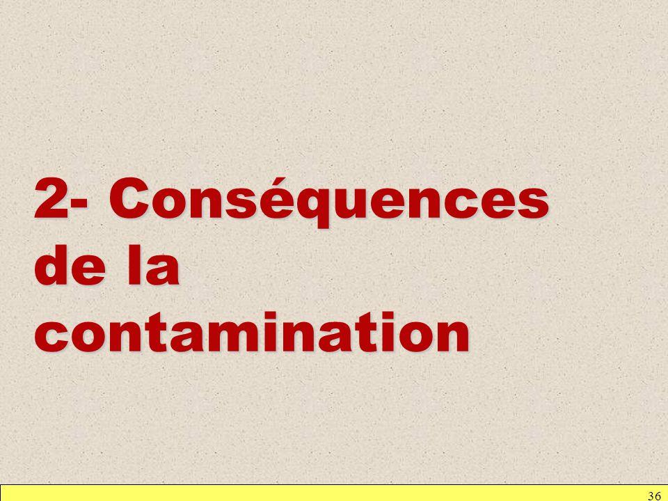 2- Conséquences de la contamination