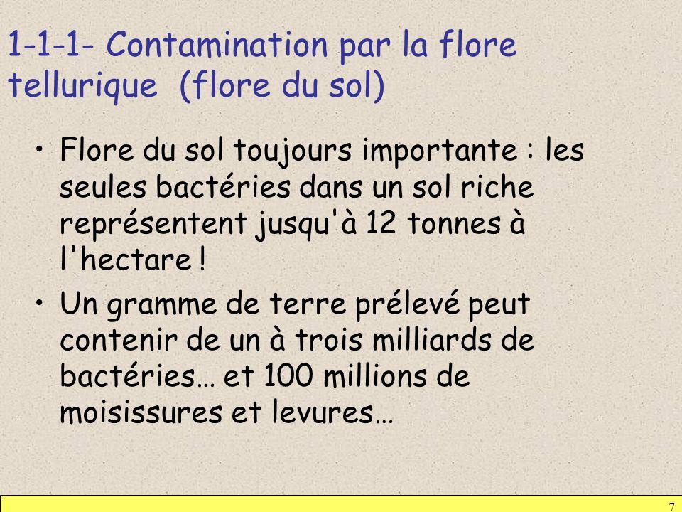 1-1-1- Contamination par la flore tellurique (flore du sol)