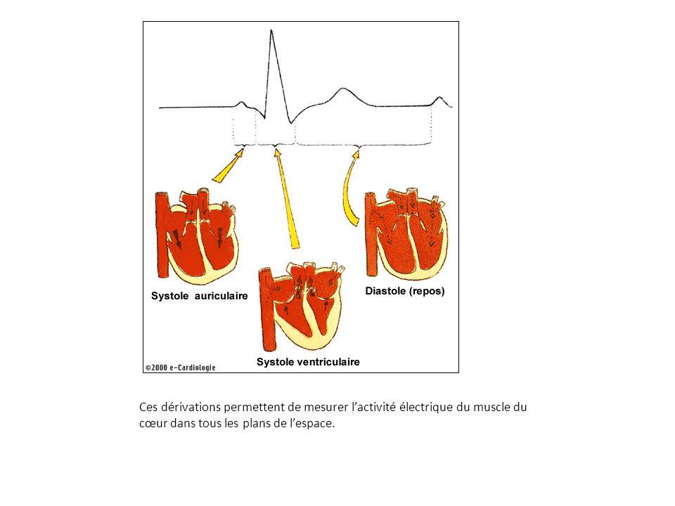Ces dérivations permettent de mesurer l'activité électrique du muscle du cœur dans tous les plans de l'espace.