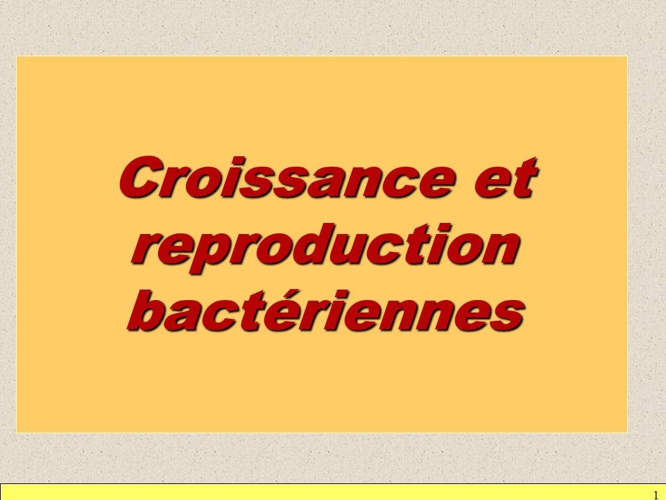 Croissance et reproduction bactériennes
