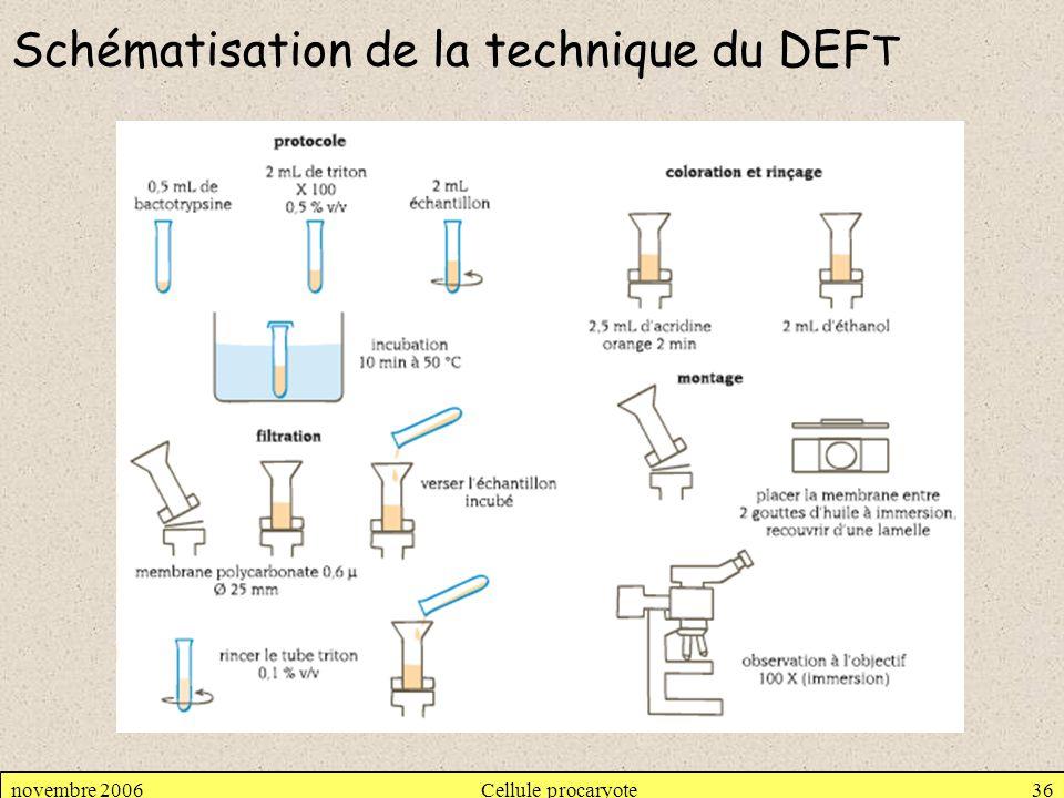 Schématisation de la technique du DEFT