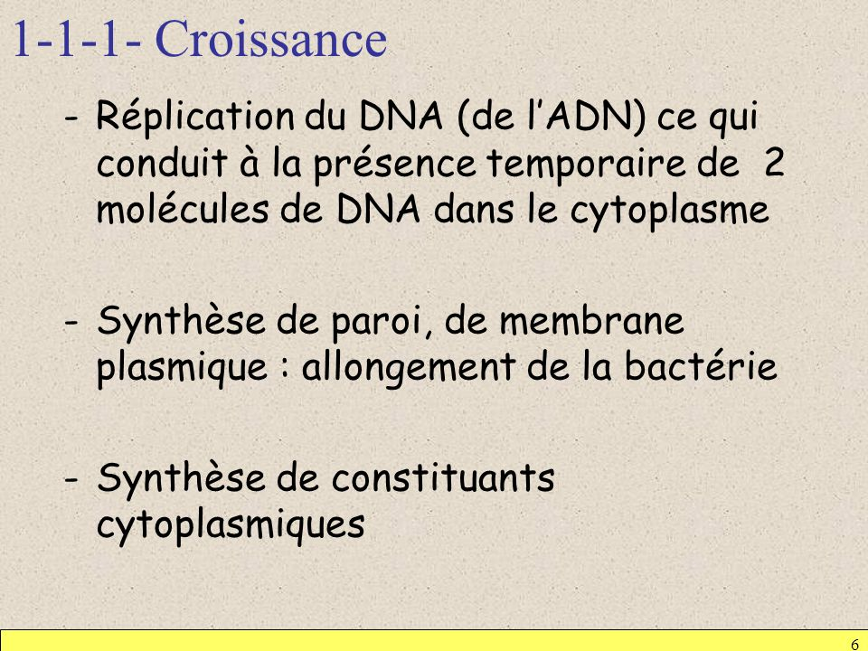 1-1-1- Croissance Réplication du DNA (de l'ADN) ce qui conduit à la présence temporaire de 2 molécules de DNA dans le cytoplasme.
