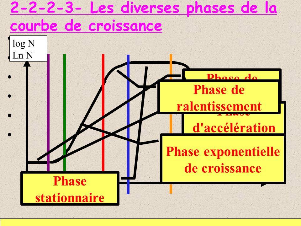2-2-2-3- Les diverses phases de la courbe de croissance