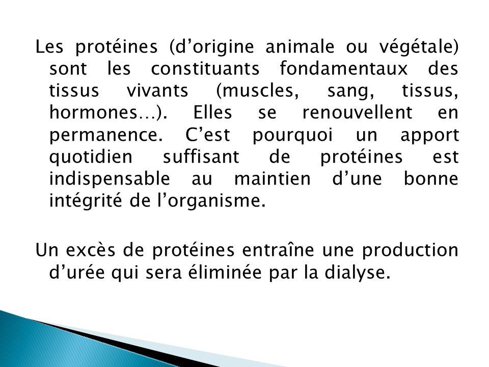 Les protéines (d'origine animale ou végétale) sont les constituants fondamentaux des tissus vivants (muscles, sang, tissus, hormones…).