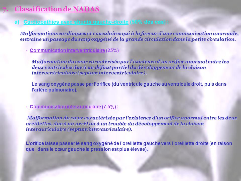 Classification de NADAS