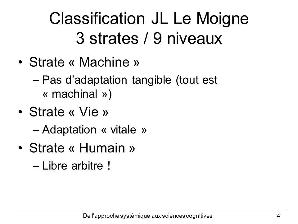 Classification JL Le Moigne 3 strates / 9 niveaux